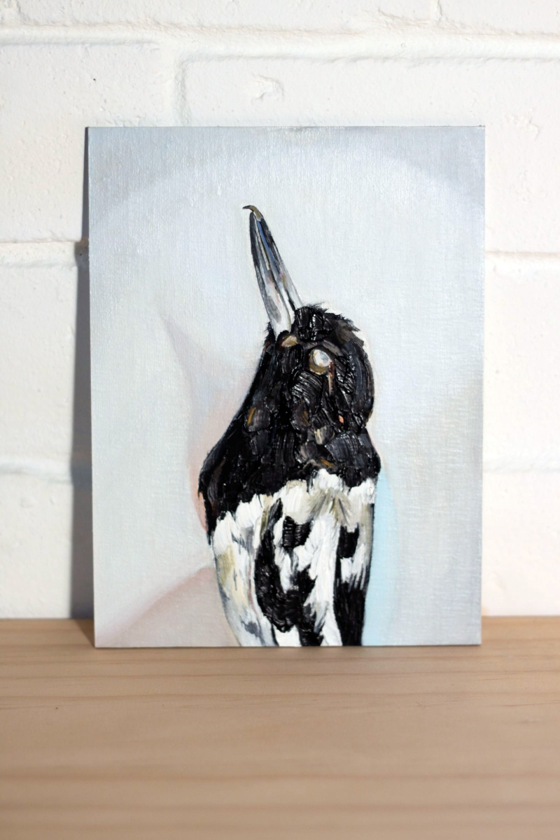 Emma Lindsay Pied butcherbird, 2013 oil on linen & dibond panel 20 x 15cm SOLD