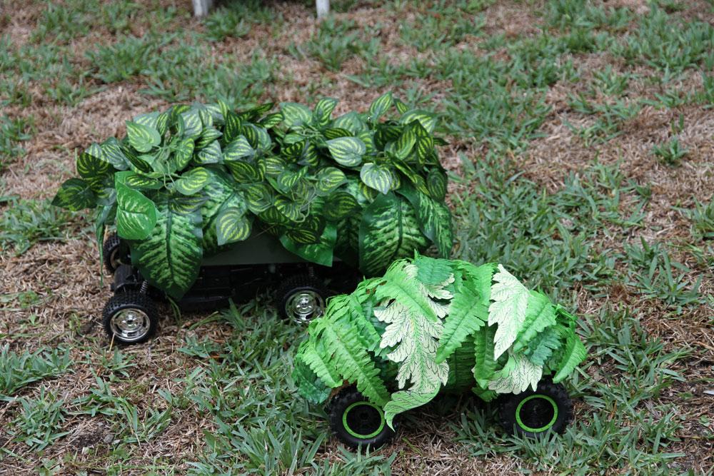 Josie CavallaroRemote Control GardenFake plants, remotecontrol cars
