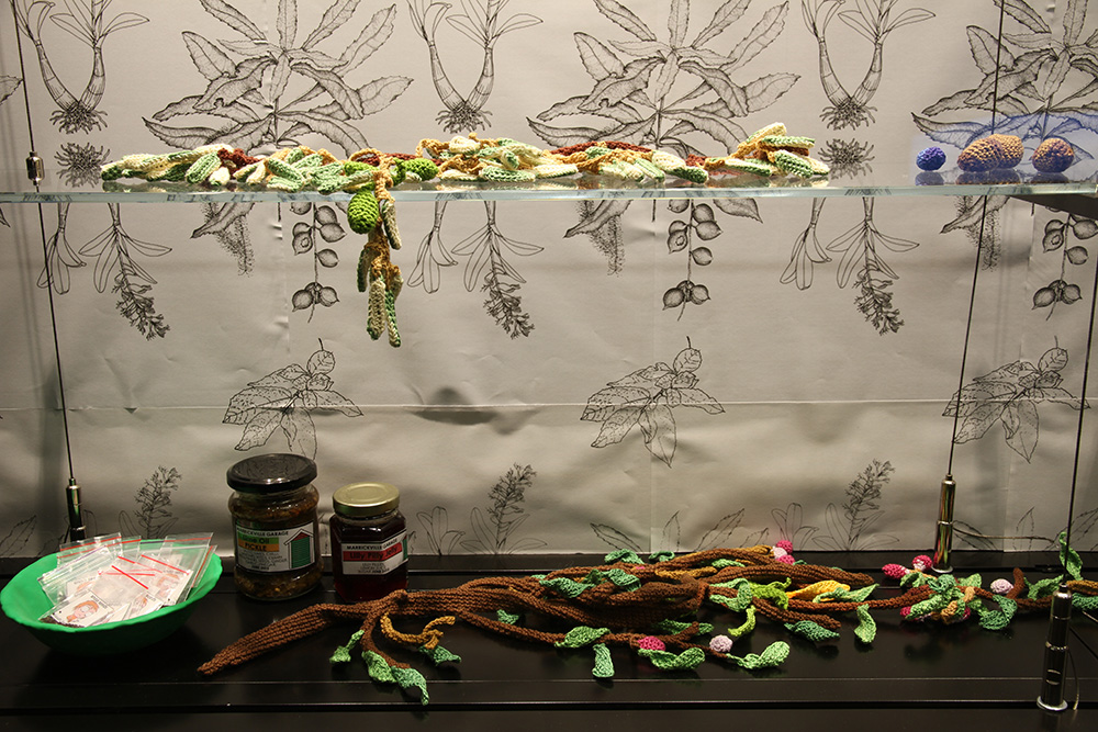 """Sarah Newall """"wild Food Project,"""" 2015. Books, perseveres, yarn, seeds, photocopies, Femo."""